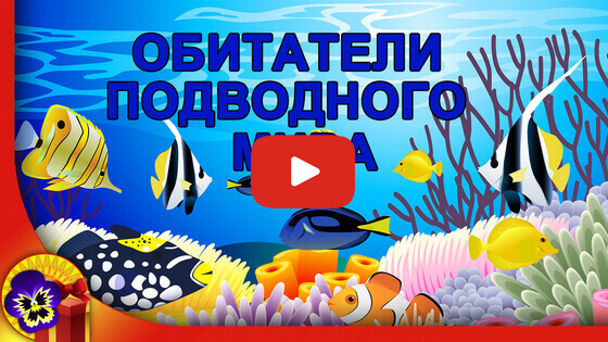 подводный мир обитатели