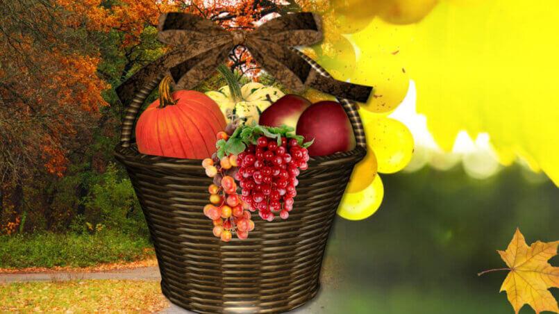 переходы Осень