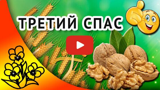 Ореховый спас видео