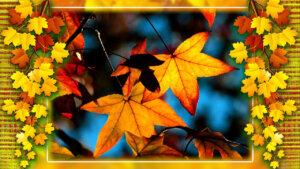 Здравствуй осень