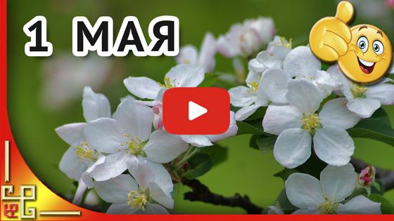 Мир труд май видео