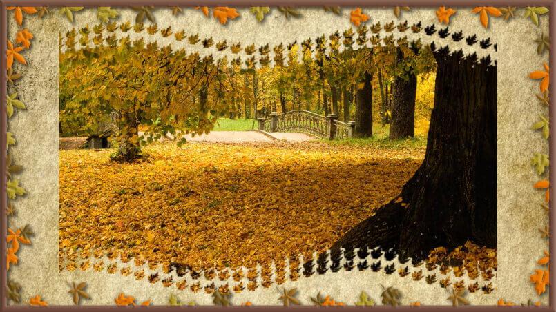 1 октября день пожилых