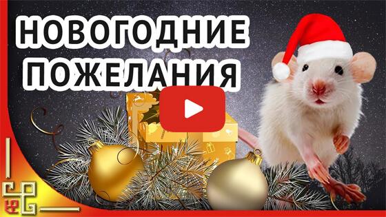 Новогодние пожелания от Крысы видео