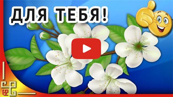 именинникам мая поздравление видео