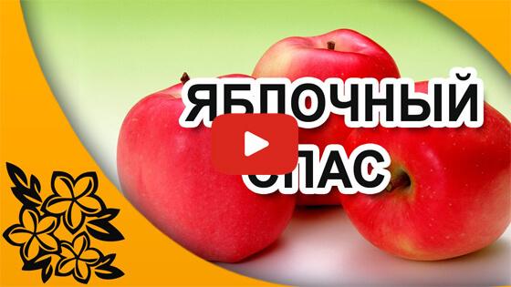 Яблочный спас видео