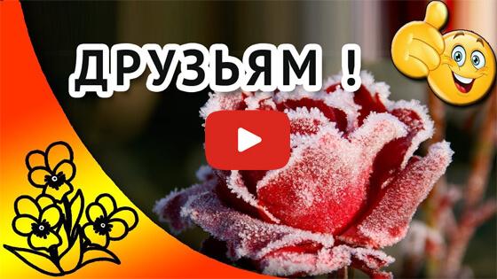 Счастливого ноября друзья видео