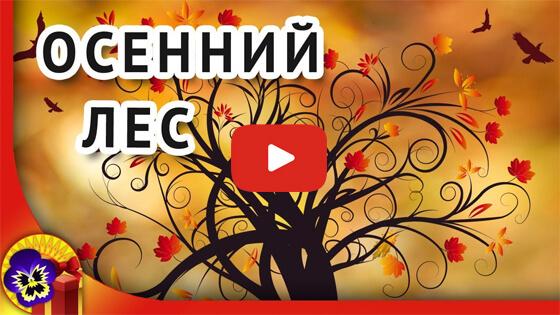Осенний лес видео