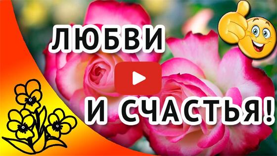 Дай Бог тебе любви и счастья! видео