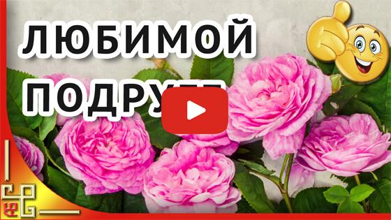 Любимой подруге в день рождения видео