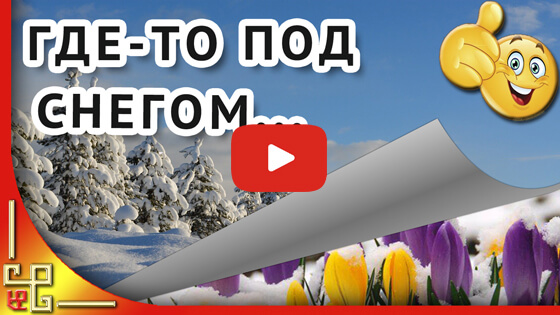 Где-то под снегом  видео